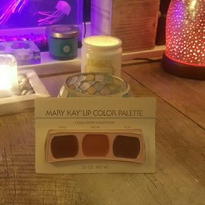 Mary Kay vintage lip color palette